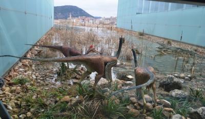Museum of Paleontology of Castilla-La Mancha
